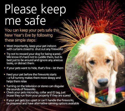 New Year's Safety For Pets