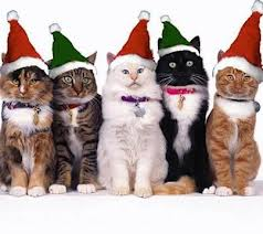 Waggers Pet Sitters wish you and your pets Happy Holidays!