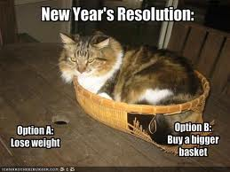 What New Year resolution's do you have planned for your pets?